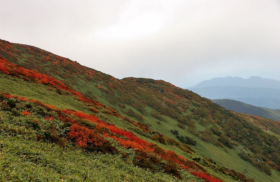 山頂直下の紅葉