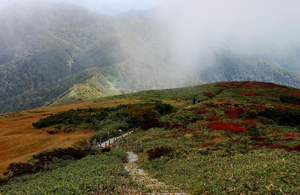 平標山ノ家への下山路