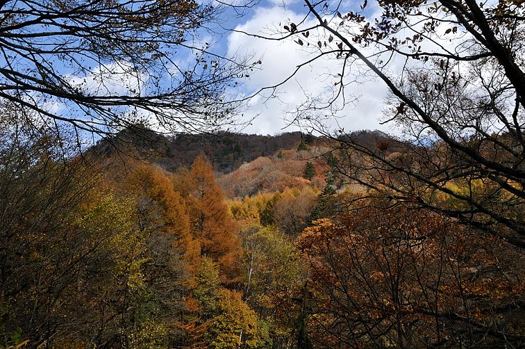 一ノ瀬への林道