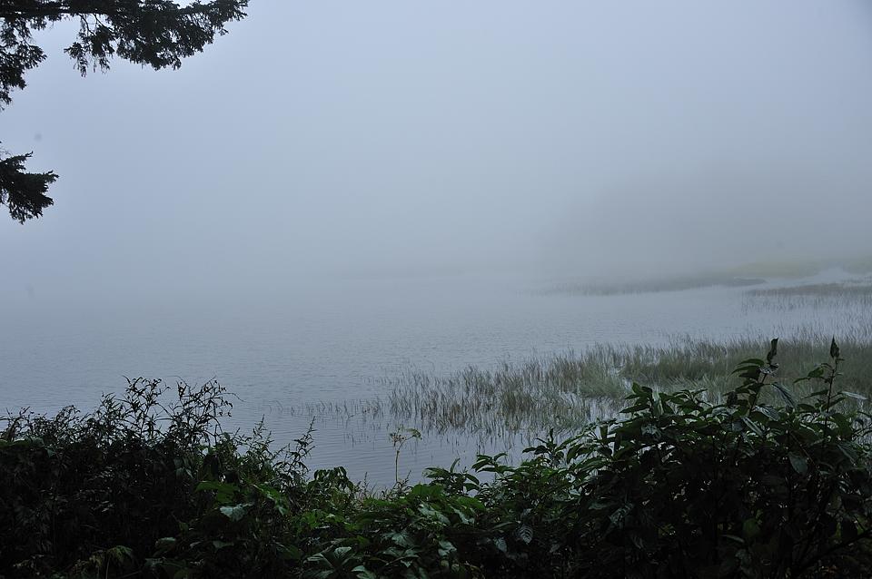 沼からの霧で燧ケ岳が見えません