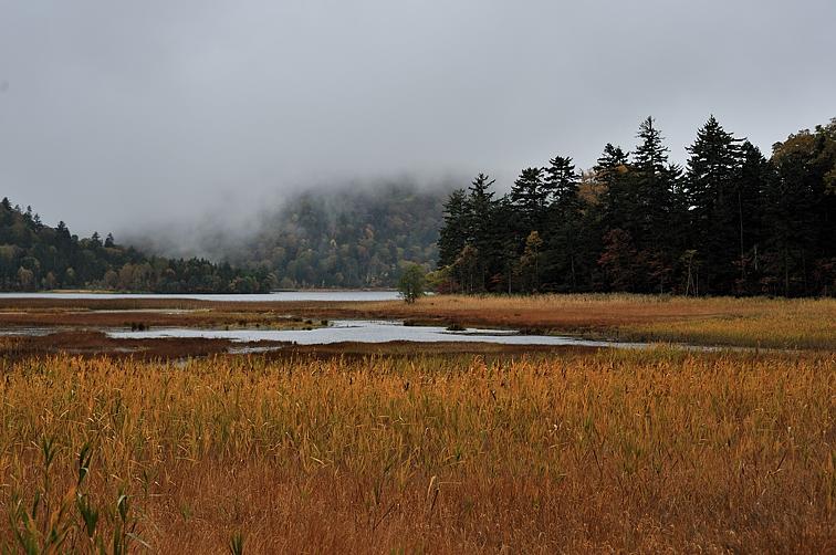 浅湖湿原より檜ノ枝の突出し