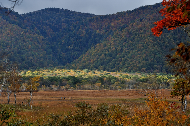 長沢から見た景鶴山麓