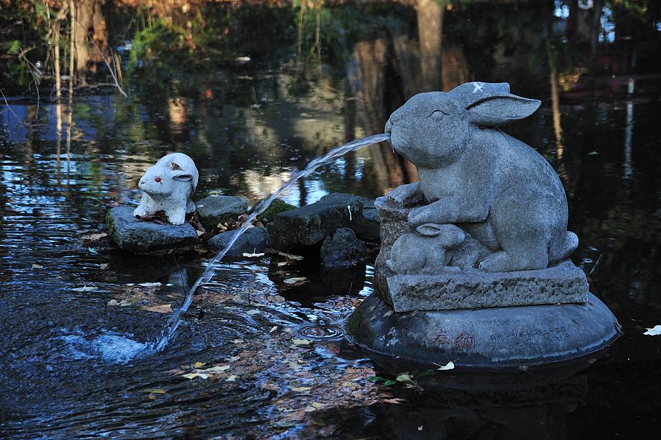 裏の池(神池)の兎の噴水