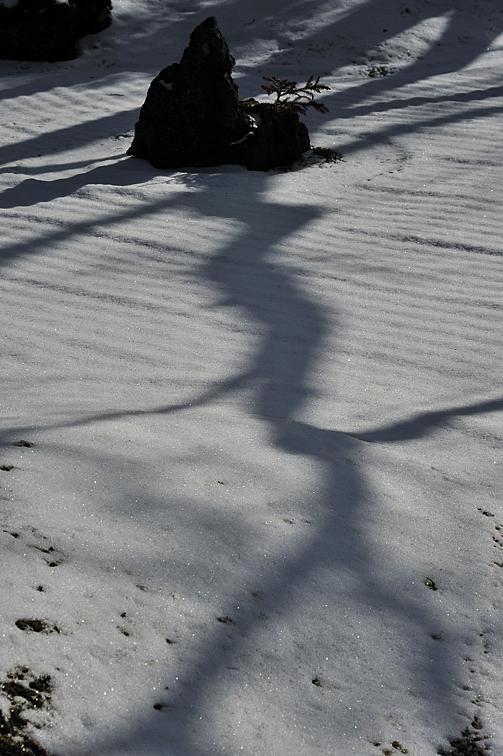 雪に覆われた円通院の石庭