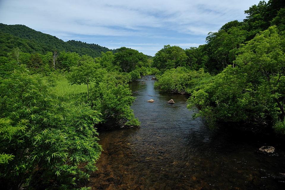 東電尾瀬橋からの只見川