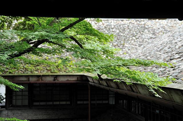二階から見た石置き屋根