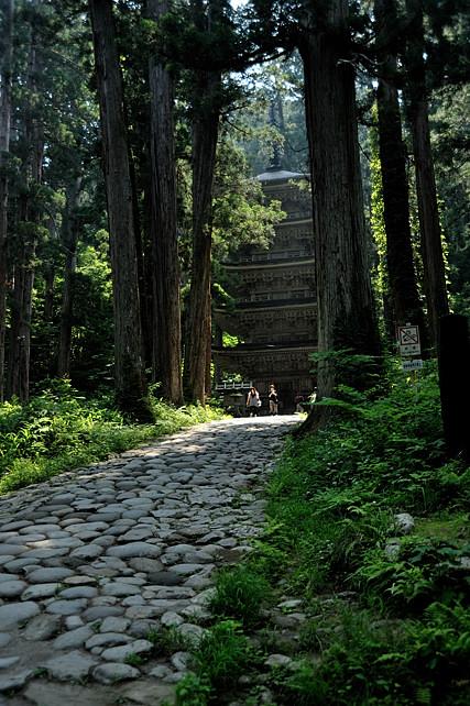 木立の間から見る五重塔