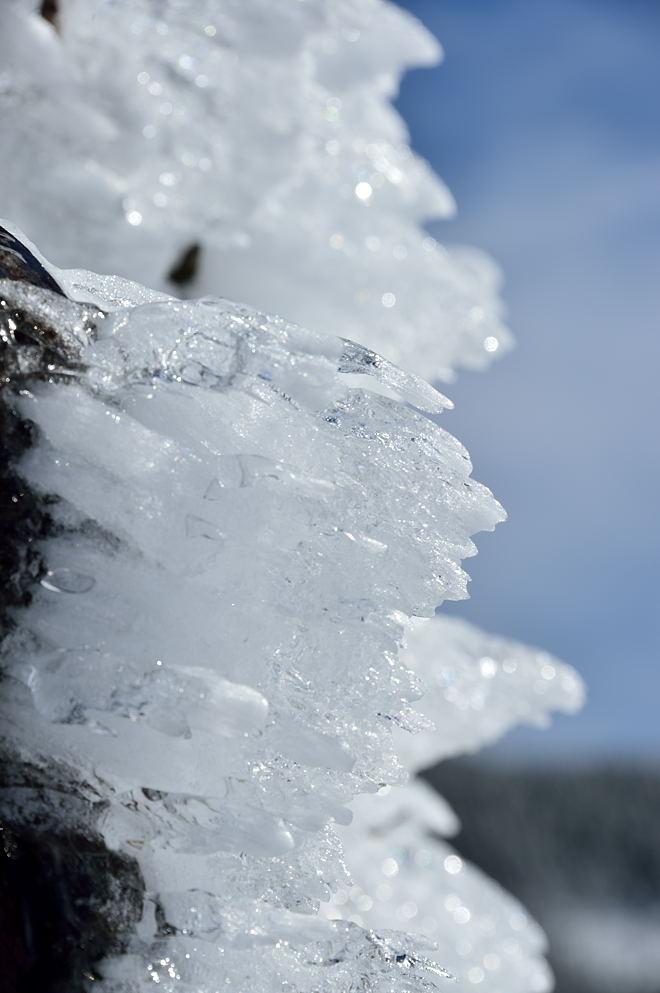 岩にびっしりと着いた雨氷