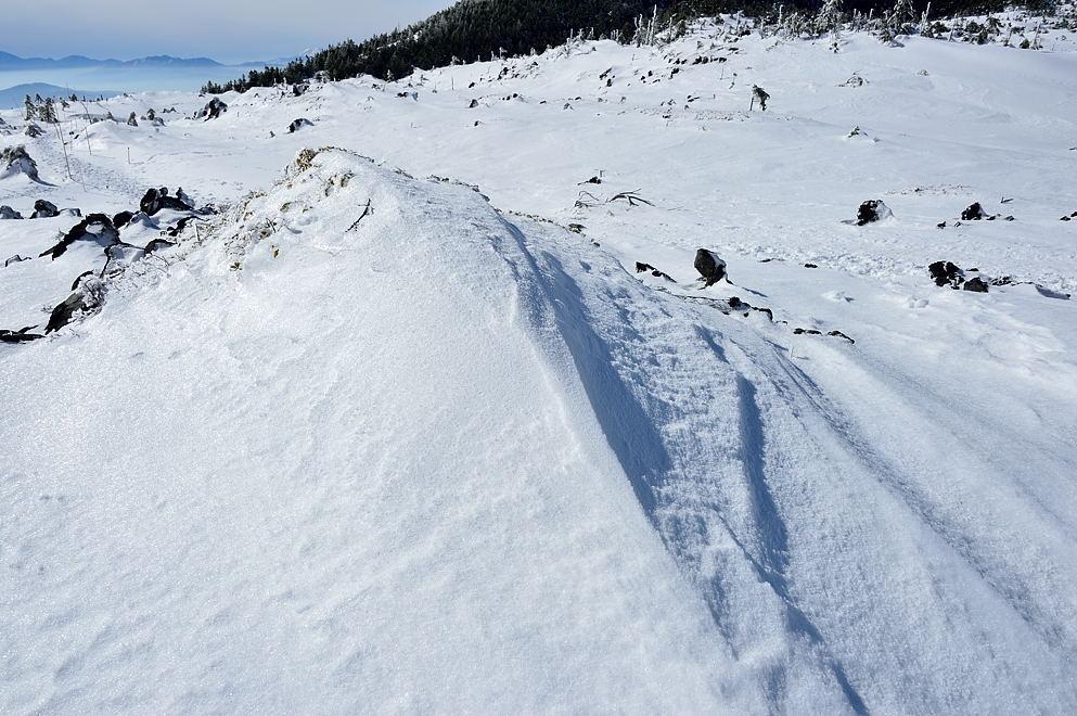 雪の風紋も氷で覆われています