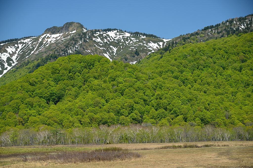 【10:18】景鶴山と新緑