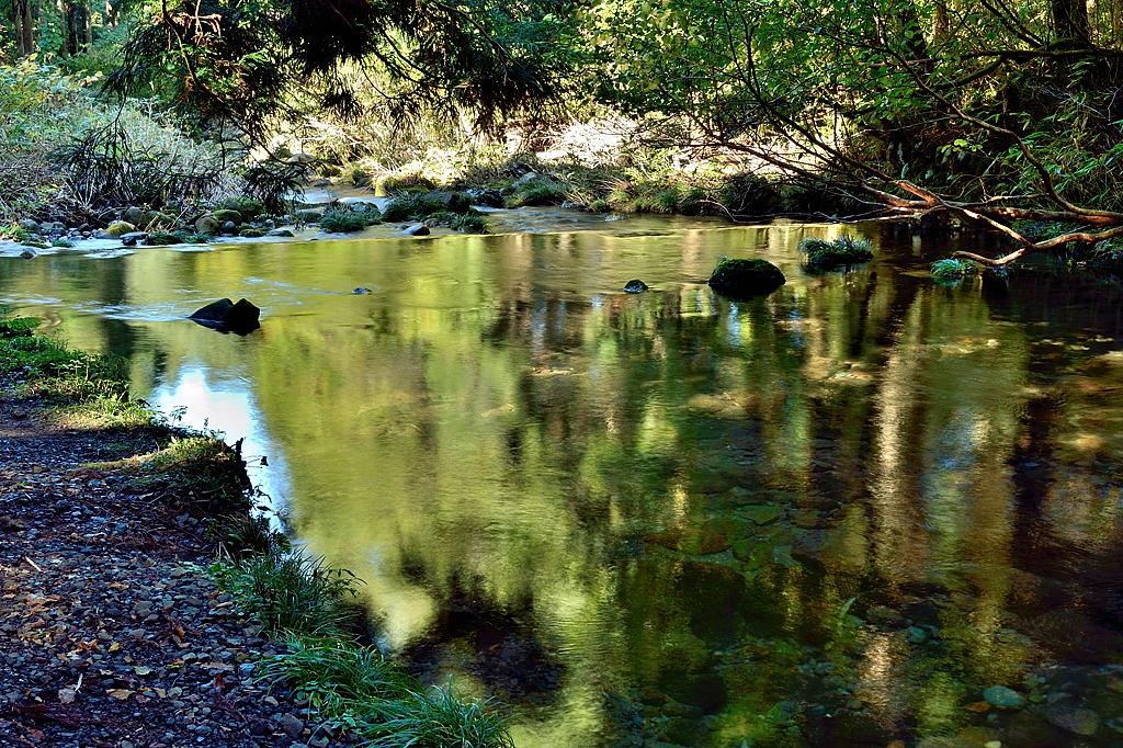 水面にも秋が映り込んでいます