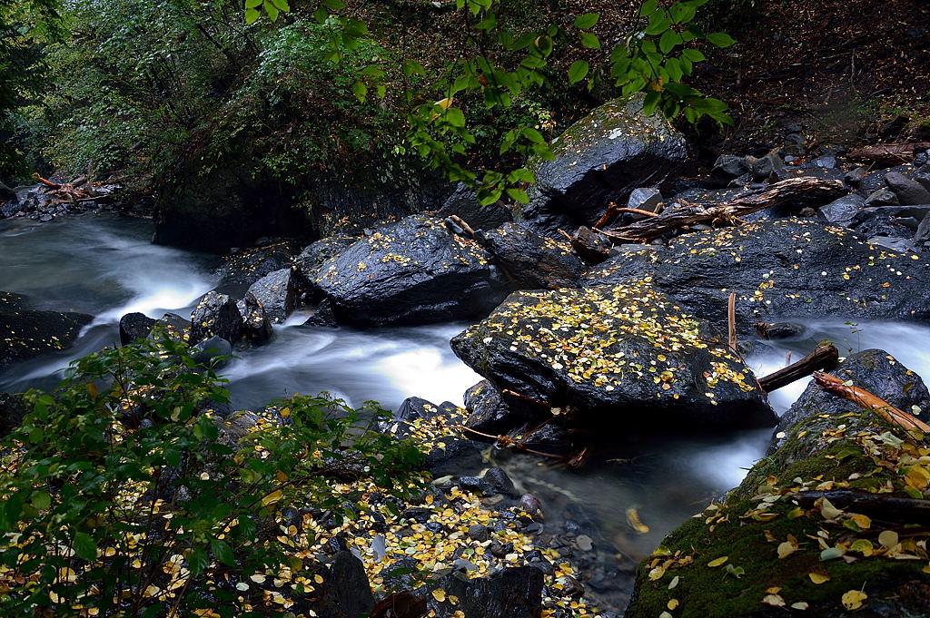 大滝の下流
