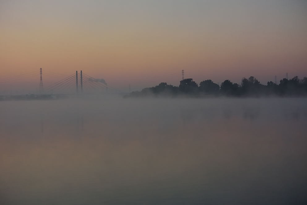 湖面を覆う霧