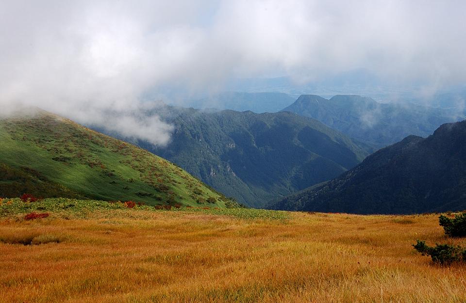 左は仙ノ倉山の裾野