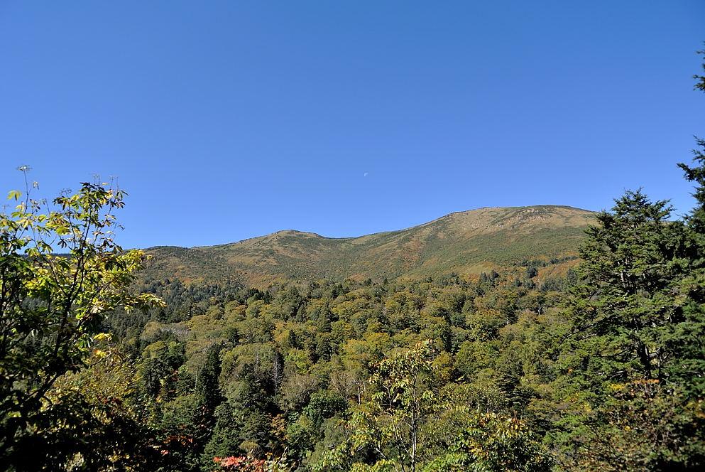小至仏~至仏山の稜線