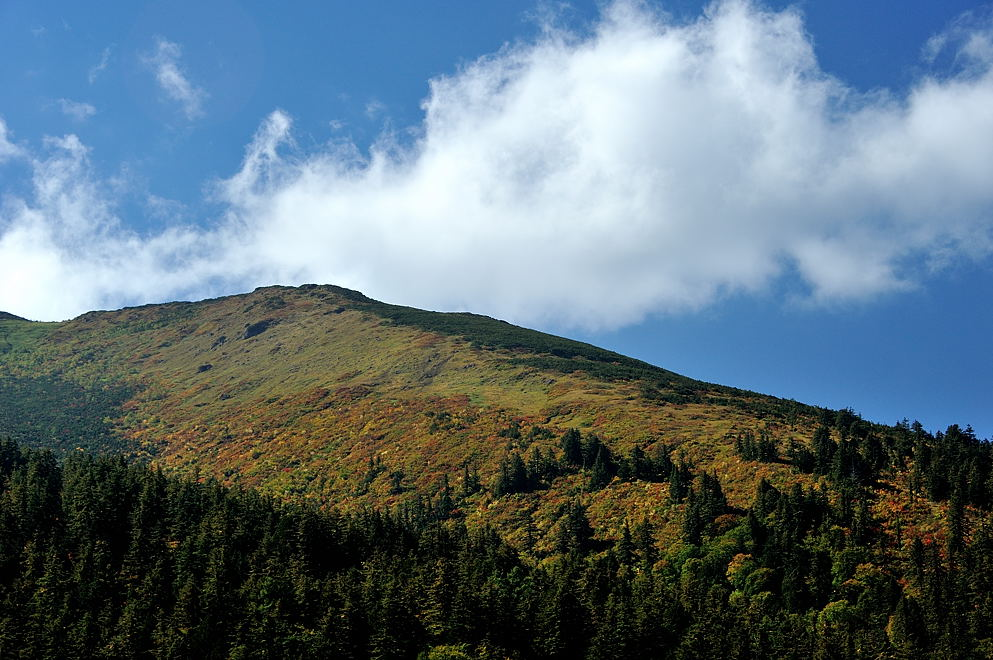 至仏山中腹の紅葉