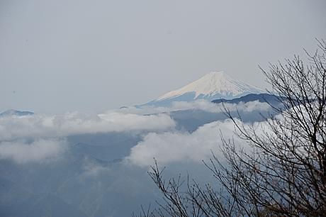 川苔山からの富士山
