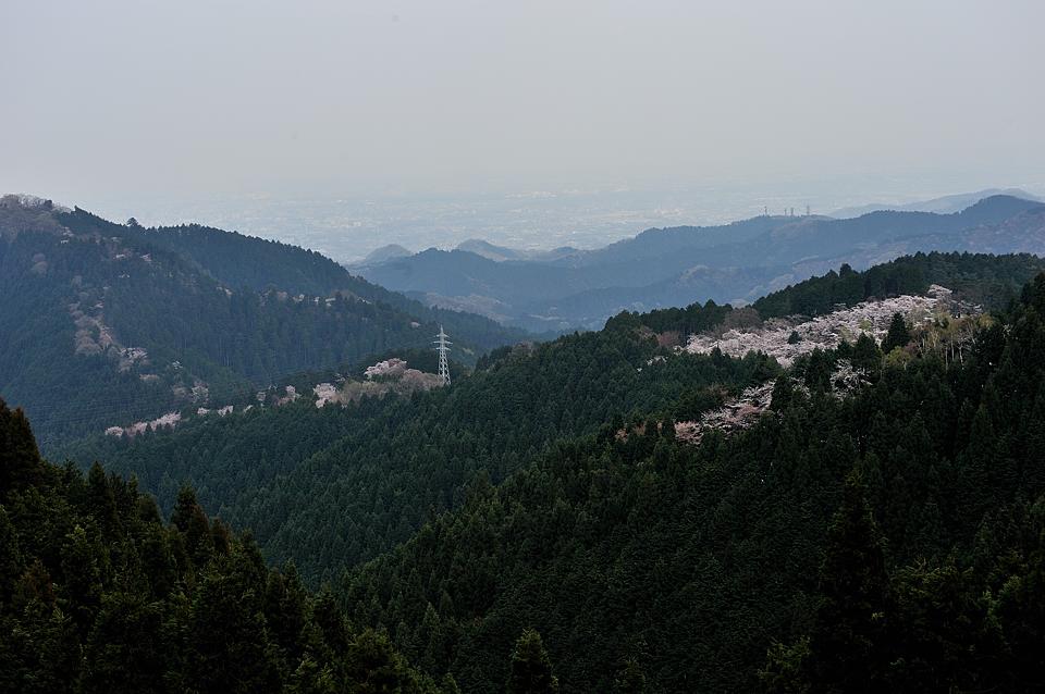城山から一丁平、高尾山