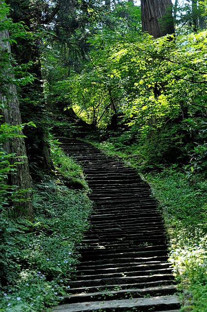 頂上まで続く険しい石段