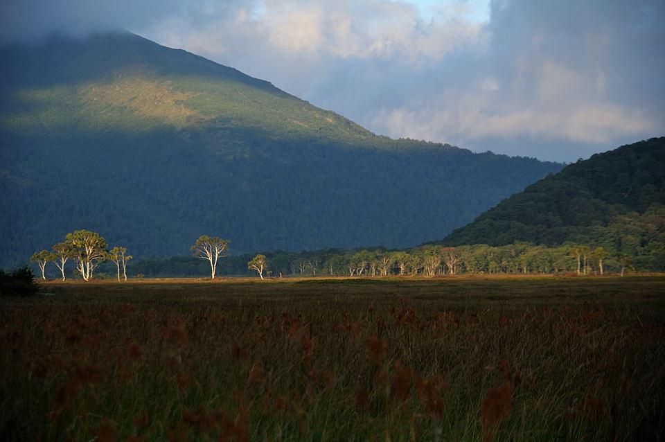 朝日が至仏山に射しました