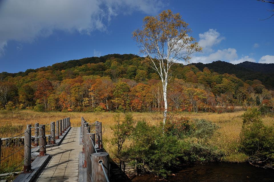 東電尾瀬橋