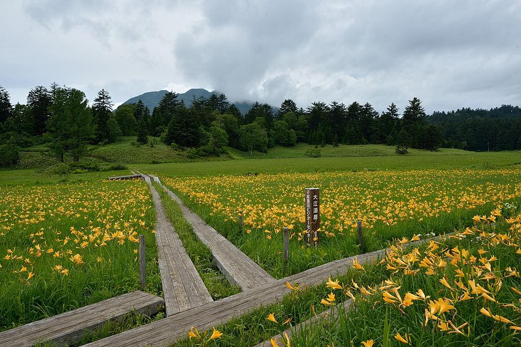 沼尻分岐のベンチから燧ケ岳方向