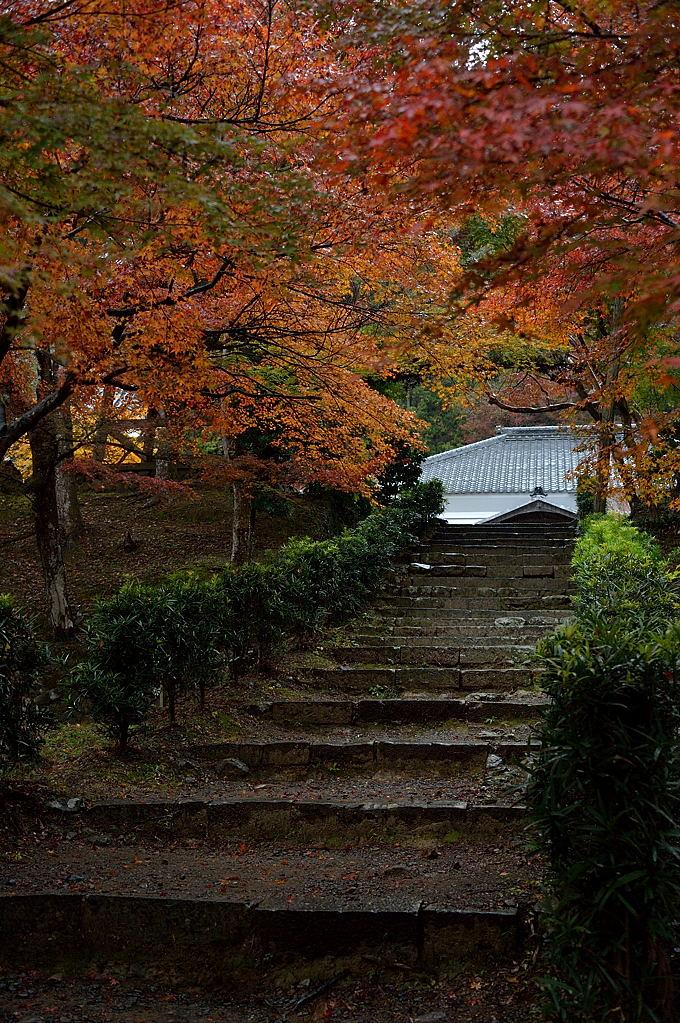 本堂への階段